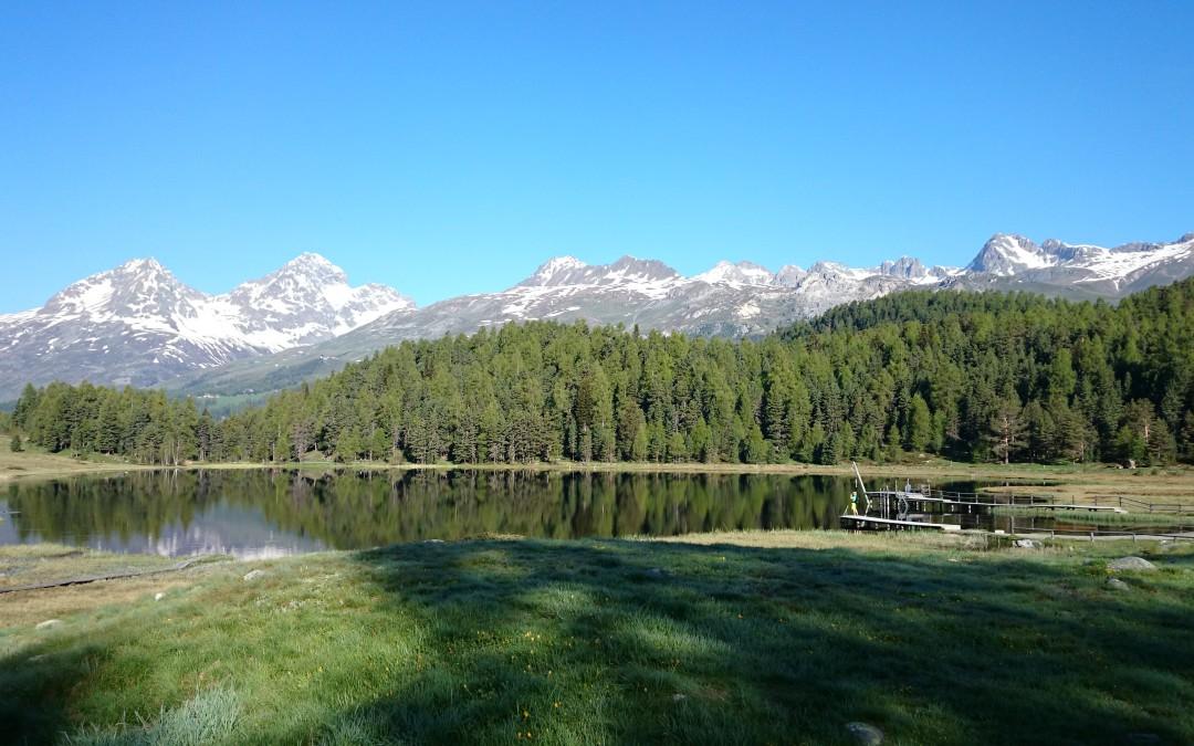 #ckrBLOG – Was macht ein Marathonläufer vier Wochen lang in St. Moritz?