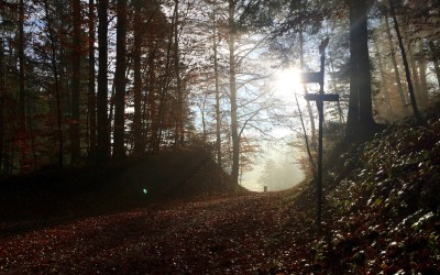 #ckrBLOG – Mentales Training macht mich nicht schneller, nur weniger langsam
